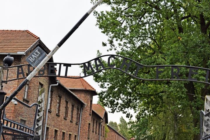 The Harrowing Beauty of Auschwitz andBirkenau